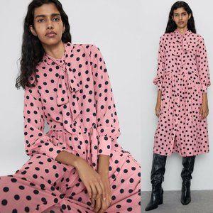 Zara Pleated Polka Dot Long Sleeve Dress